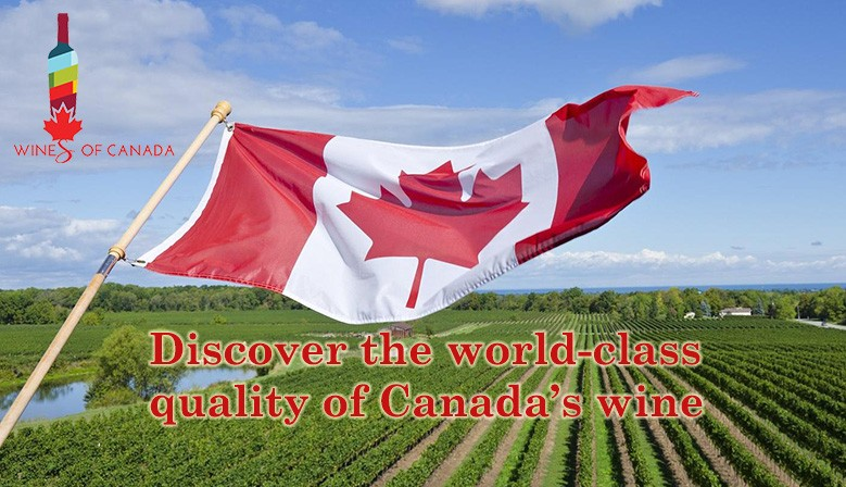 Ontario County Vintners Quality Alliance (VQA)
